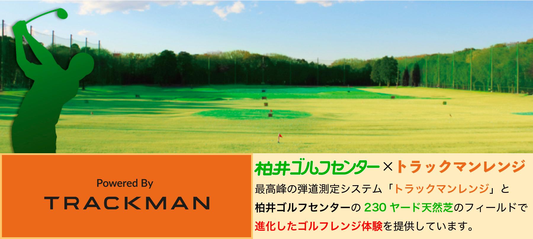 実測230ヤード 天然芝